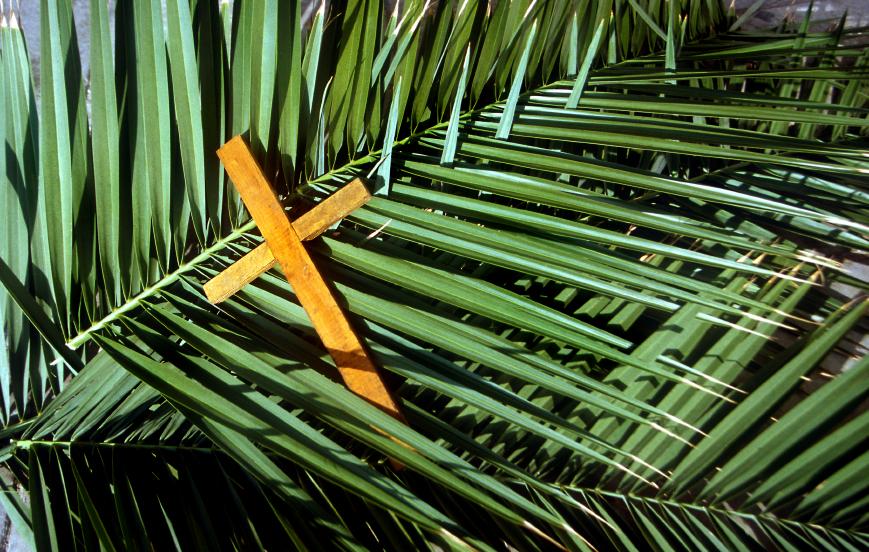 Chú Giải Tin Mừng - Chúa Nhật Lễ Lá - Năm A