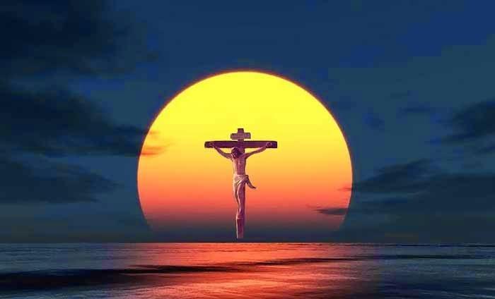 Vui Học Thánh Kinh CN Lễ Lá B